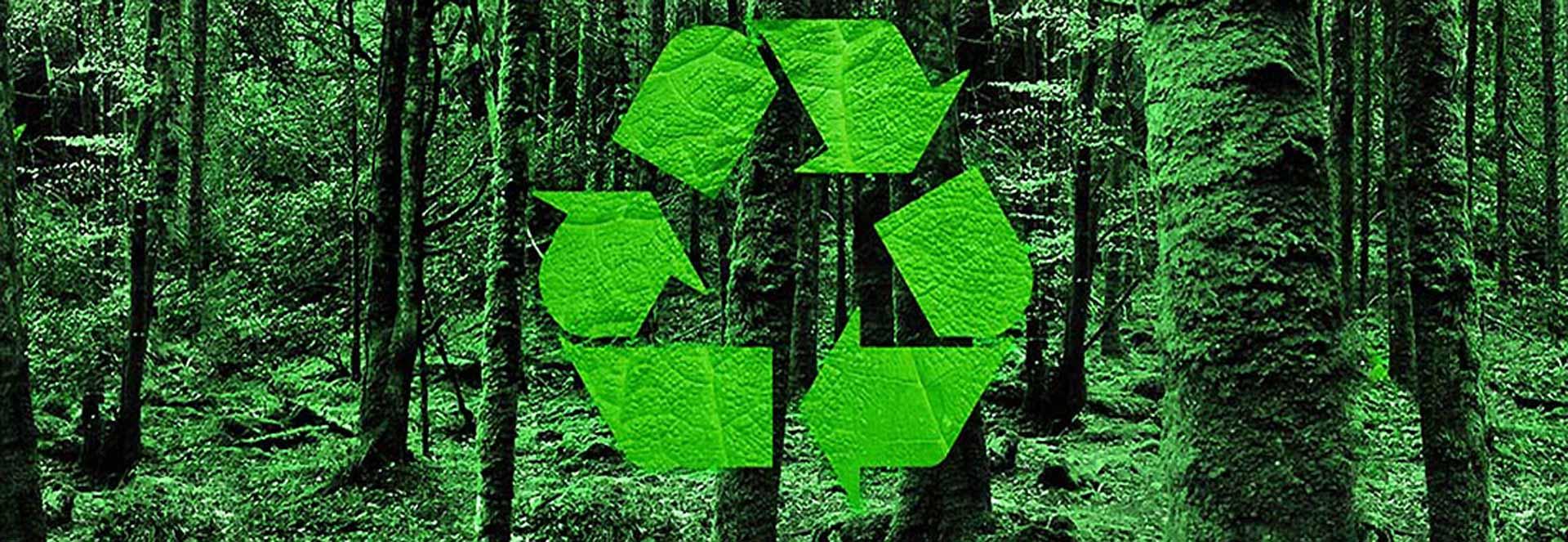 erp gestionale rifiuti